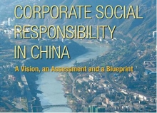 CSR with Chinese Characteristics?